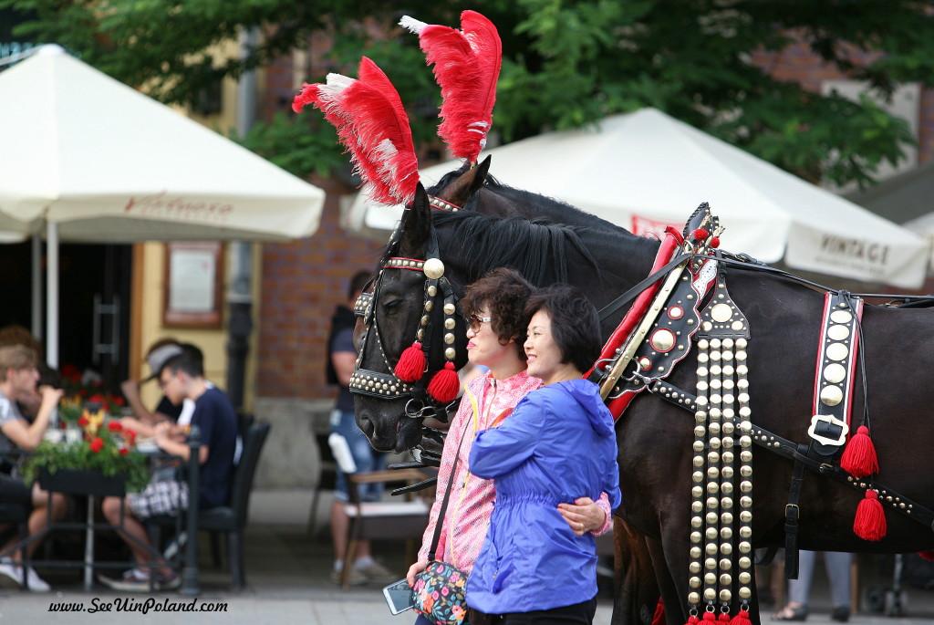 A turyści co? Strzelają pozę przy koniach i tyle ich widzieli.