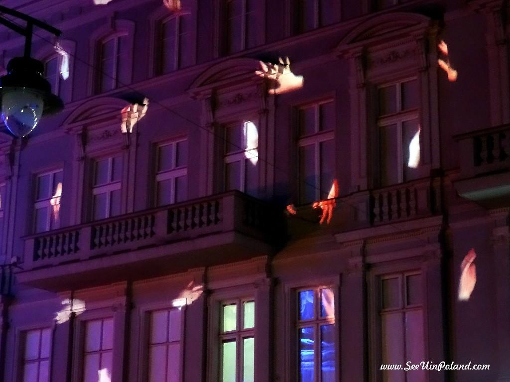 light_move_festival_2015_28