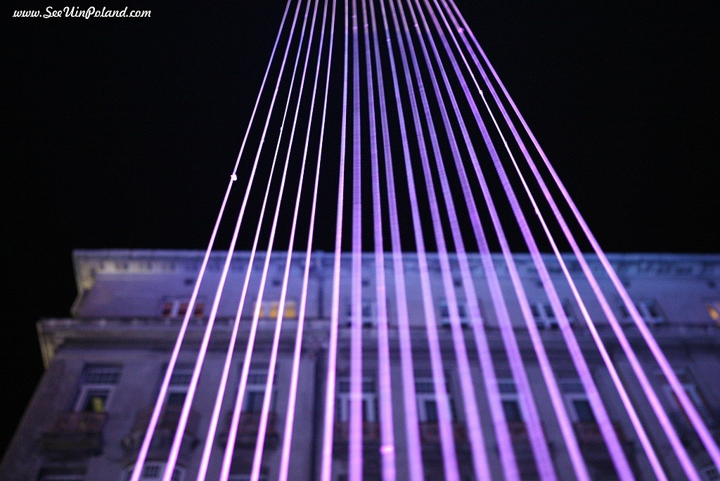 light_move_festival_2015_6