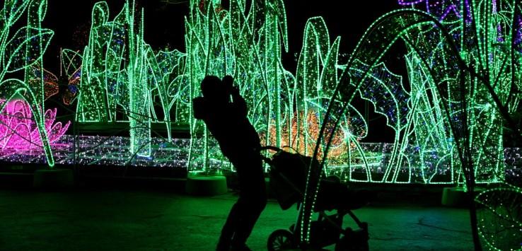 Królewski Ogród światła W Wilanowie See U In Poland