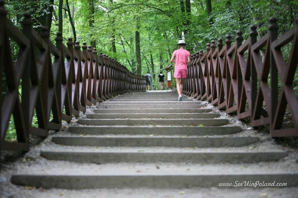 warka atrakcje pilica park pułaskiego kajaki
