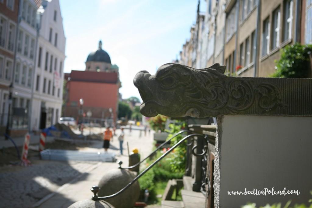 rzygacze gdańsk
